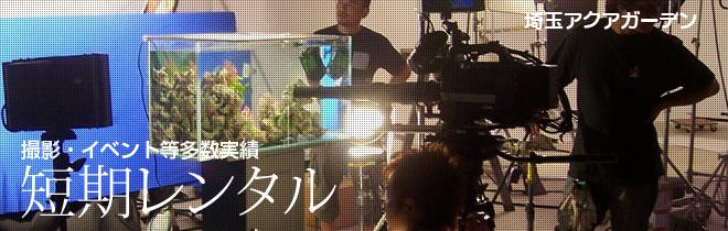 埼玉県の撮影・イベント水槽レンタル