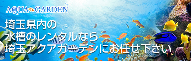 埼玉県 水槽レンタル