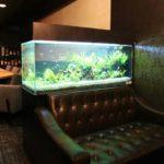 東京都 飲食店(Bar)に幻想的な淡水魚水槽を設置